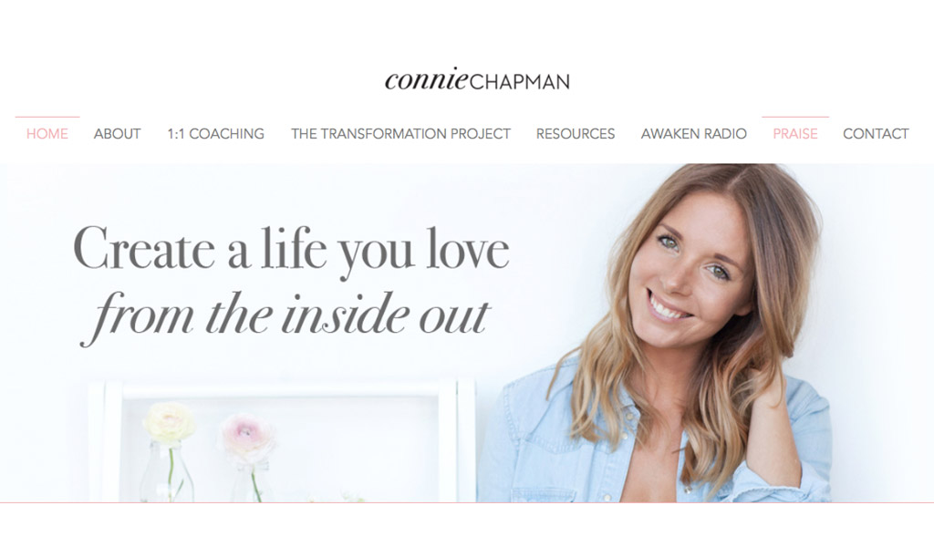 starting-with-a-blog-shelf-connie-chapman