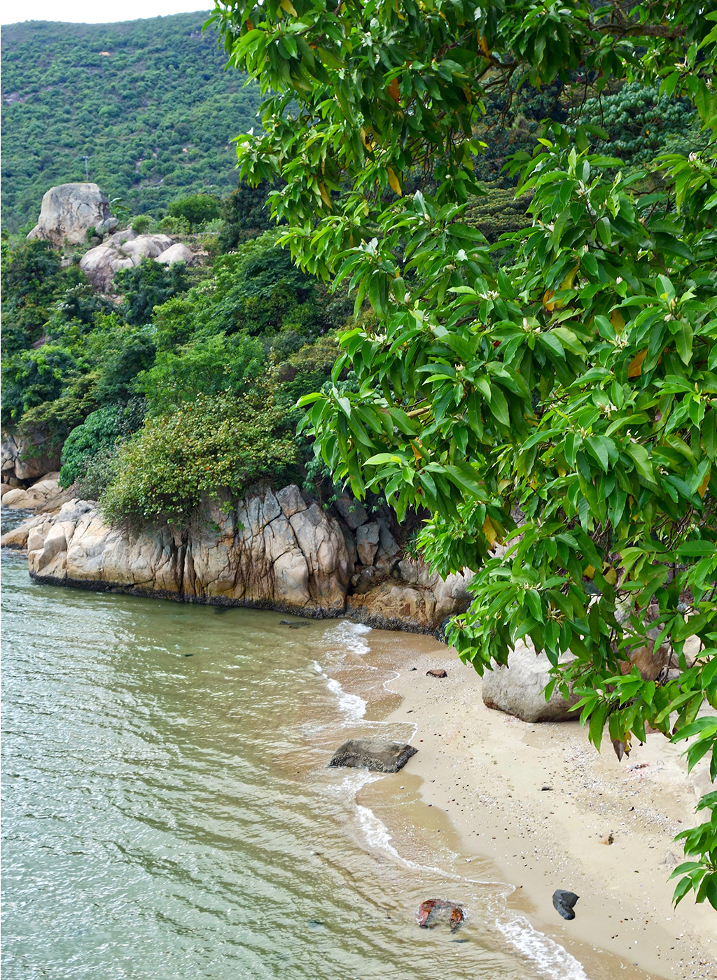 starting-with-a-blog-mui-wo-hong-kong-12