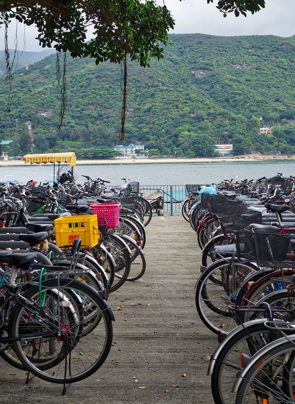 starting-with-a-blog-mui-wo-hong-kong-14