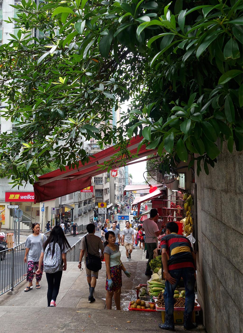 sai-ying-pun-street-art-starting-with-a-blog-25