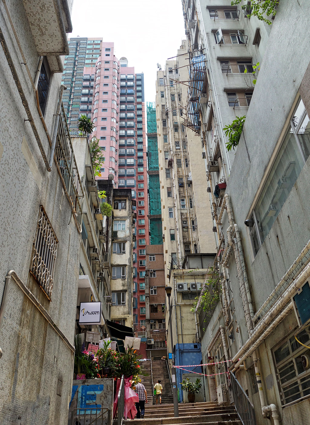 sai-ying-pun-street-art-starting-with-a-blog-26