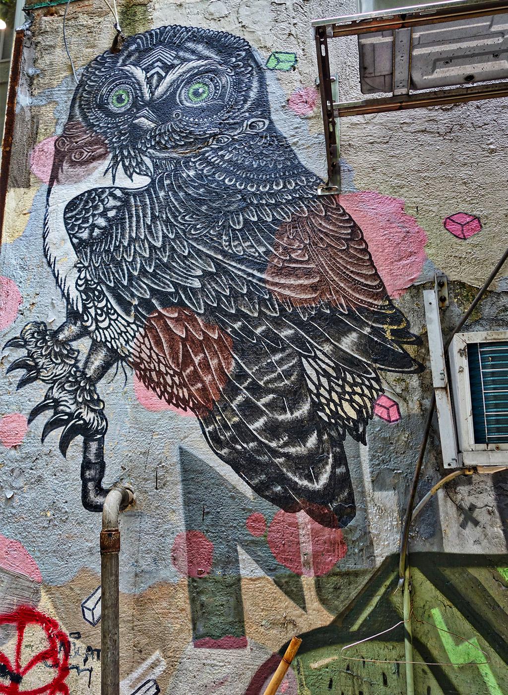 sai-ying-pun-street-art-starting-with-a-blog-29