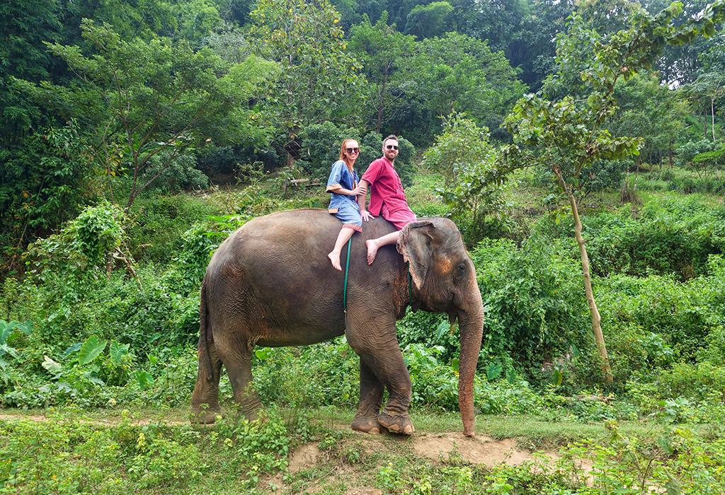 chiang-mai-thailand-elephant-sanctuary-2