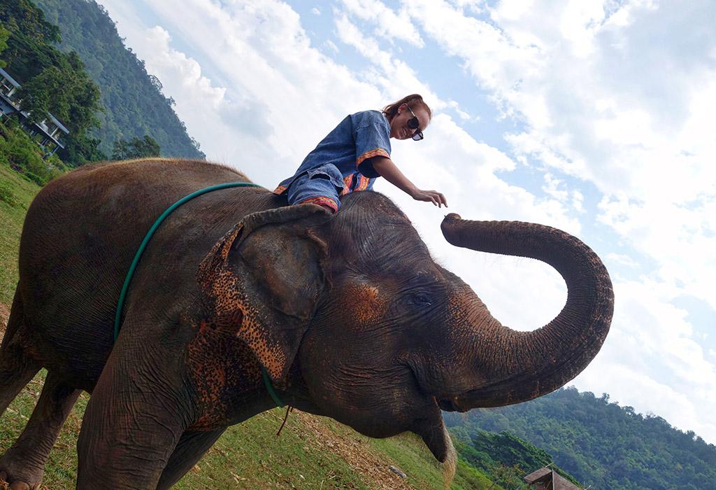 chiang-mai-thailand-elephant-sanctuary-3