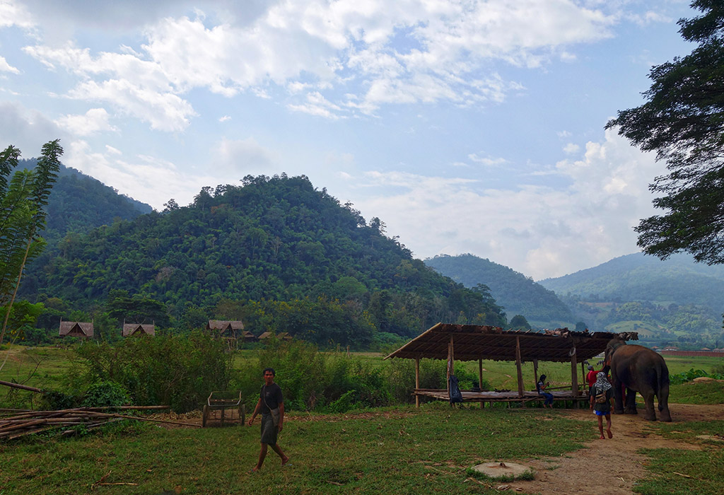 chiang-mai-thailand-elephant-sanctuary-5