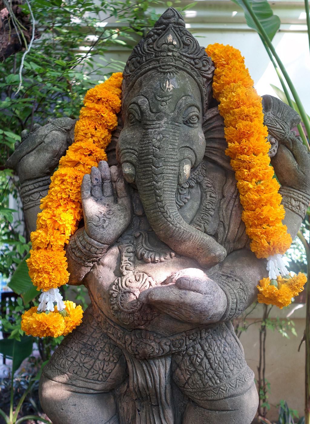 chiang-mai-thailand-elephant