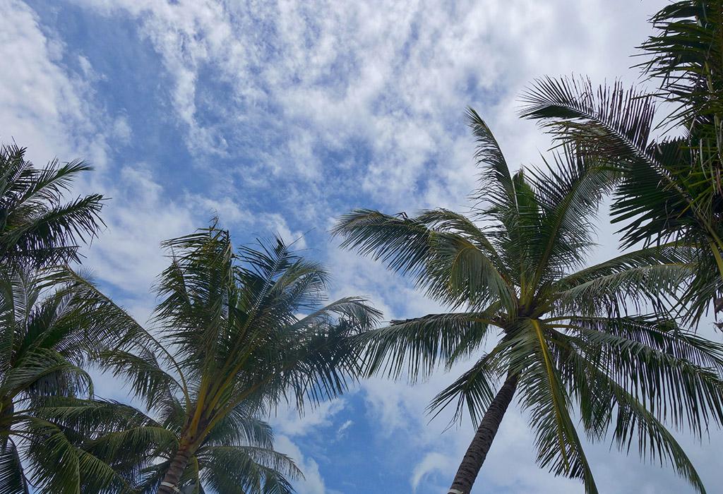 surin-beach-phuket-4