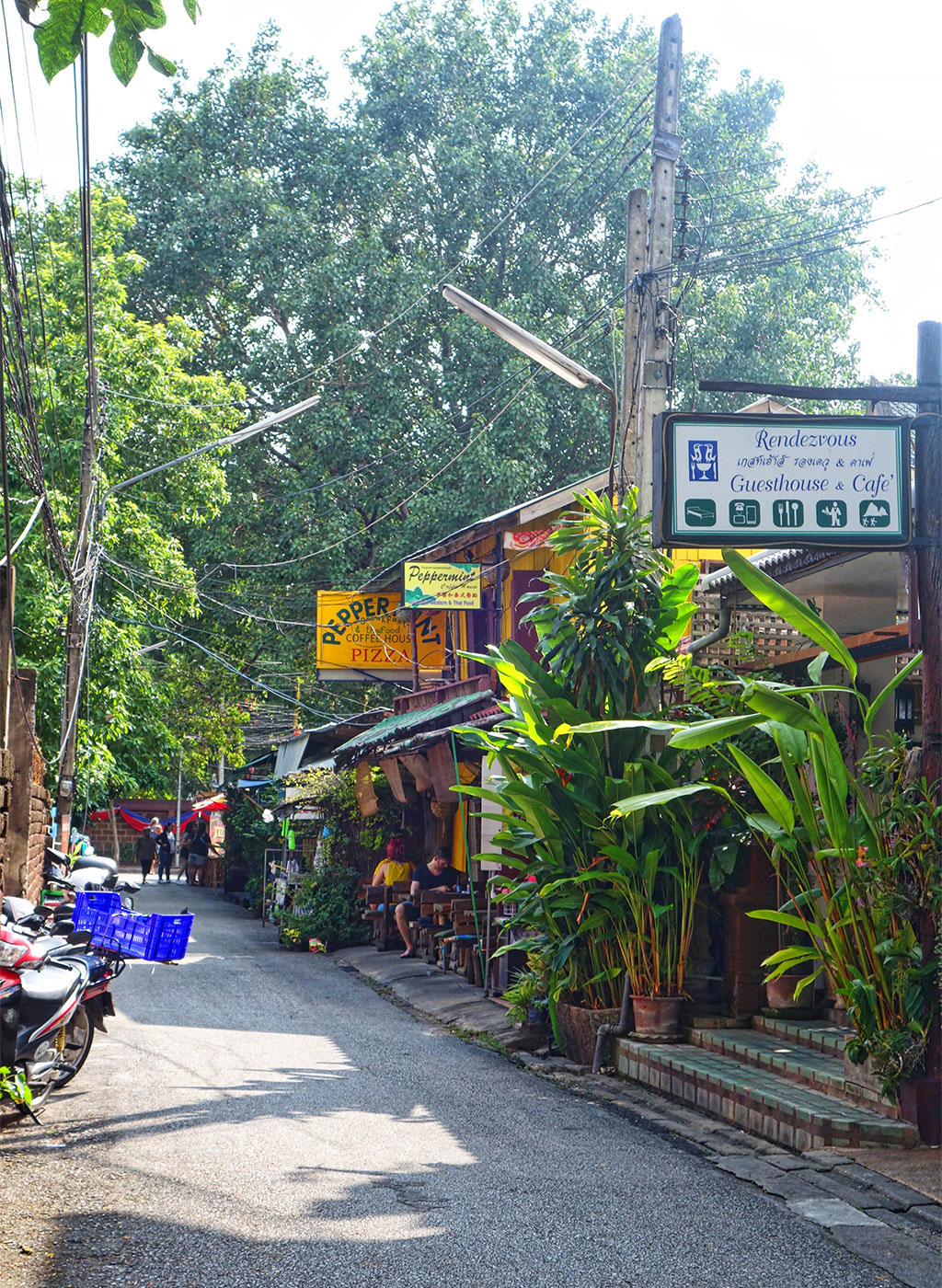 chiang mai hook up Give kao soy a miss and try chiang mai's authentic, spicy, flavorful northern thai food a writer january 12, 2016 start with the pomelo salad, a pitch-perfect balance of spicy, sweet, sour and nutty, toasted flavours.
