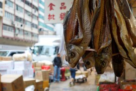 starting-with-a-seafood-street-hong-kong-7-870x595